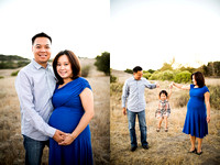 CHRISTINE_NGUYEN_FAMILY_2014-63