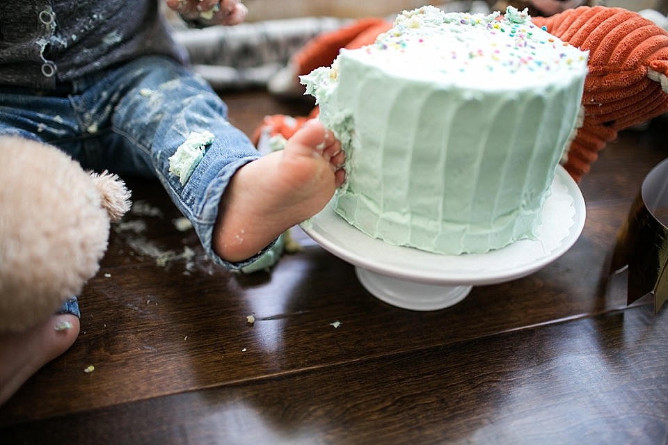Christina Cho, Christina Cho Photography, Family Photographer, Family Photography, Cake Smash, Orange County Photography, Orange County Photographer, Birthday, Family Session