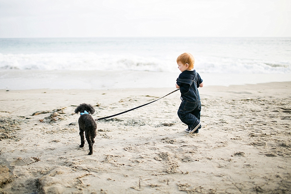 Christina Cho Photography, Christina Cho, Orange County Photography, Orange County Photographer, Family Photographer, Family Photography