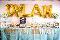Dylan's First Birthday Party 2017